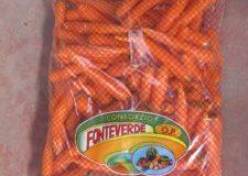 carote-fresche-225x300