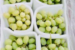 la-uva2